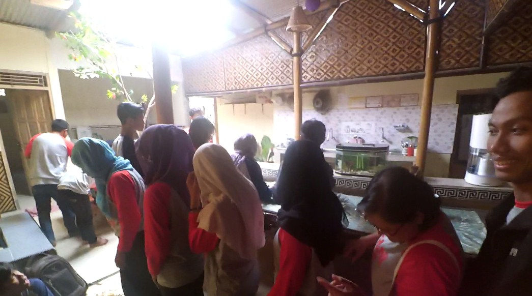Desa Bahasa Blogger Jogja